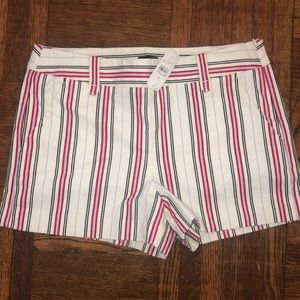 Ann Taylor loft brand new  high waisted shorts